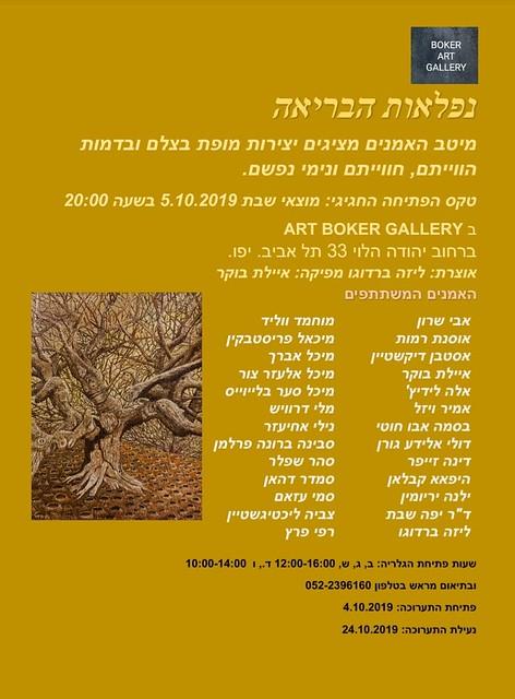 אמניות עכשוויות איילת בוקר היוצרות האמניות הציירות הישראליות העכשוויות המודרניות