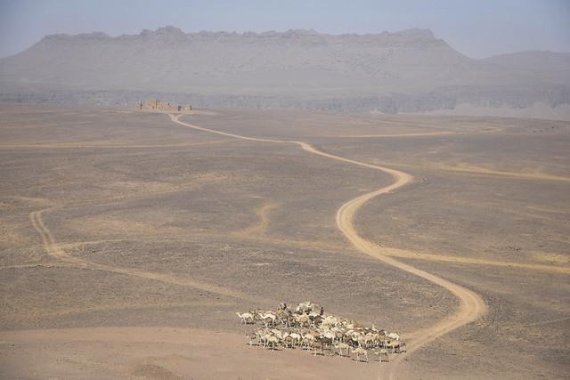 The road to Fort Saganne - Amogjar Pass