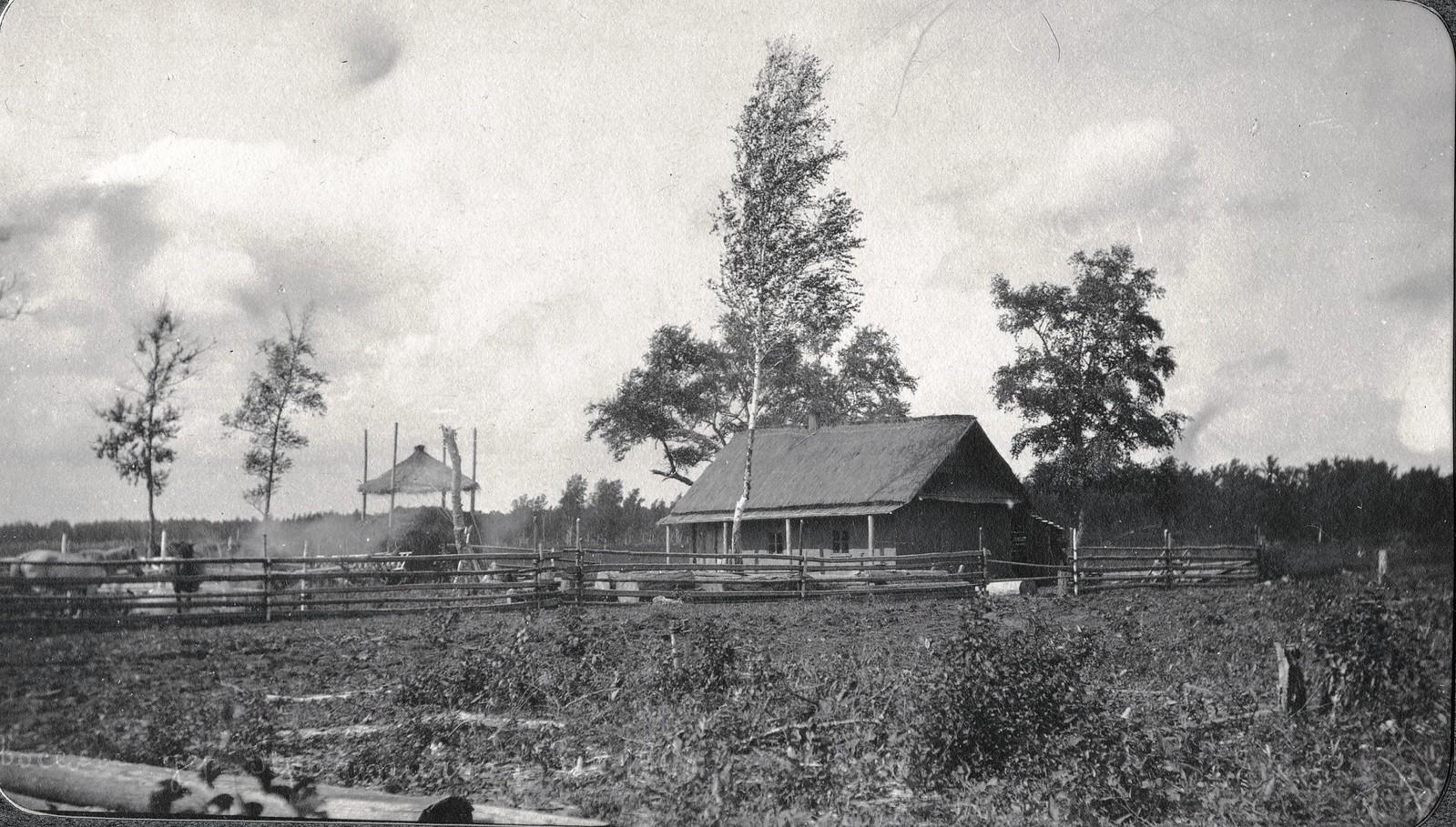 Вид переселенческой деревни Практичи.