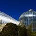 YDH_4626_20210227_Botanic Garden_NikonNIKON D750.jpg