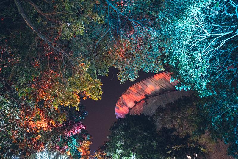 花燈|宜蘭中央公園