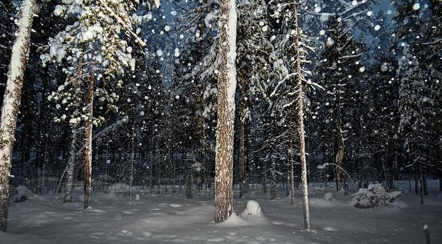 snowfall with flash