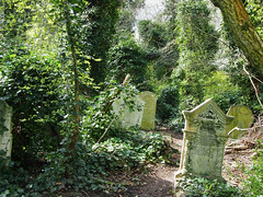 Overgrown graves