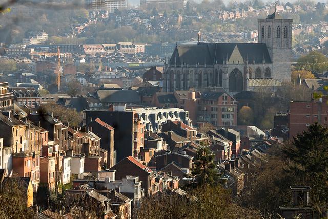 La Collégiale Saint-Martin (Liège )