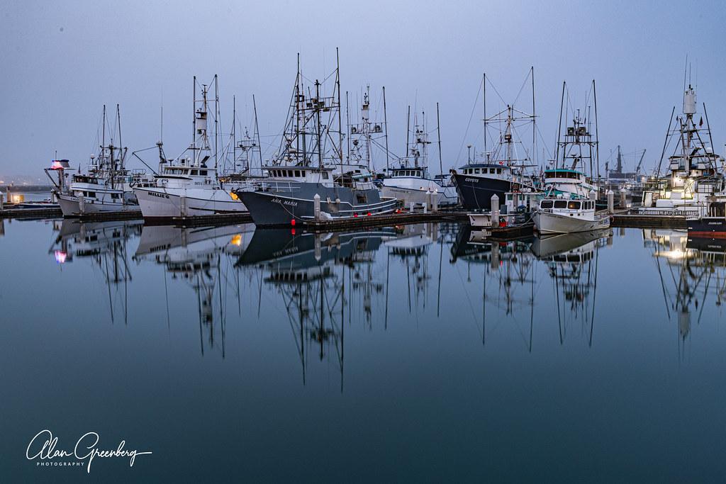 Fleet in the morning fog 2
