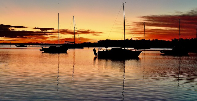 NSW AUSTRALIA  - port Stephens -