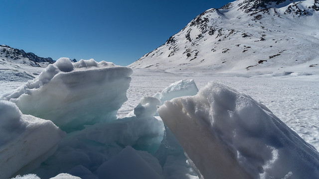 Lago Bianco: close up (2/3)