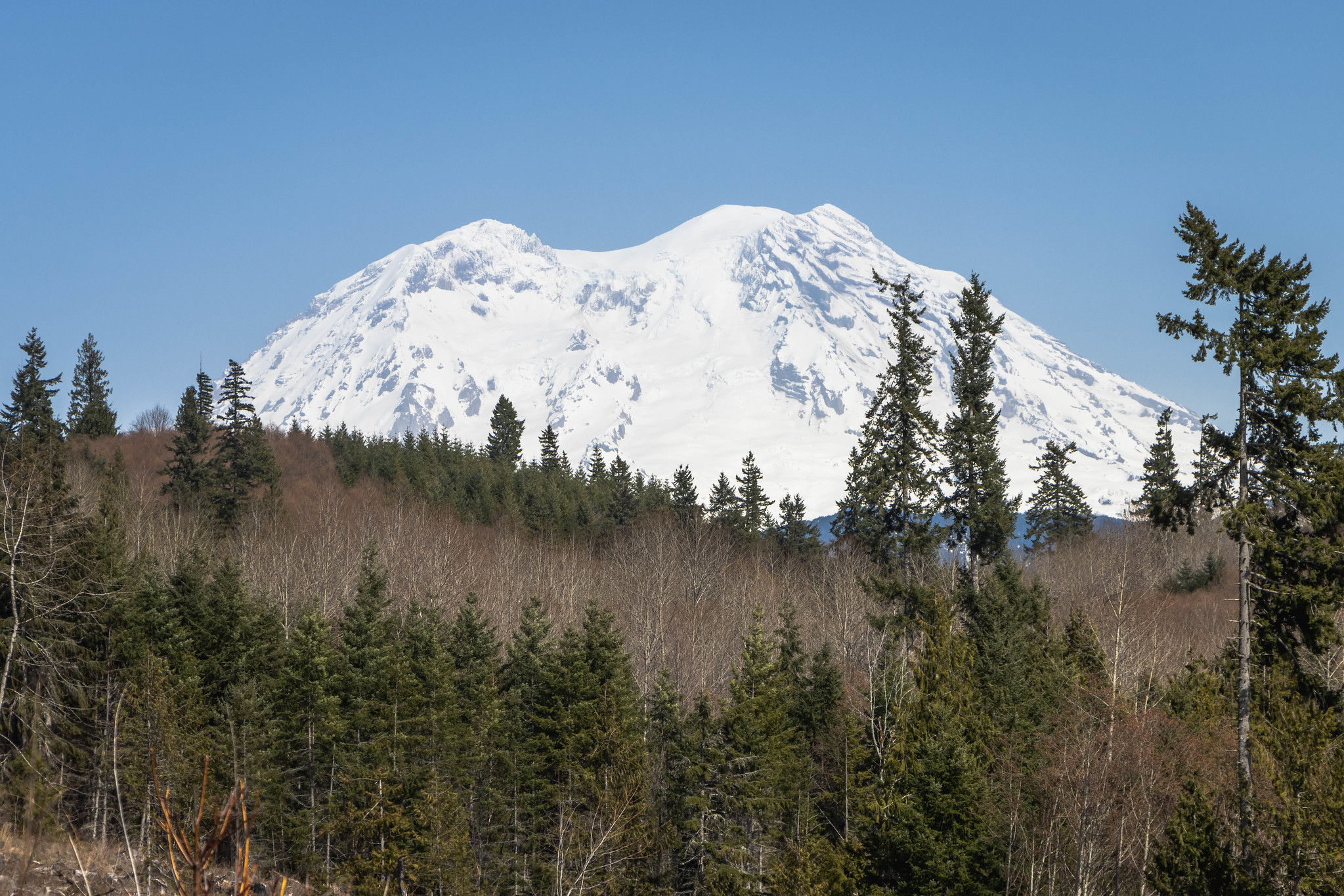 The superimposed Mount Rainier
