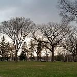 Bossen Field Park