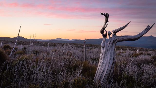 Sunset at Moonlight Ridge - Tasmania