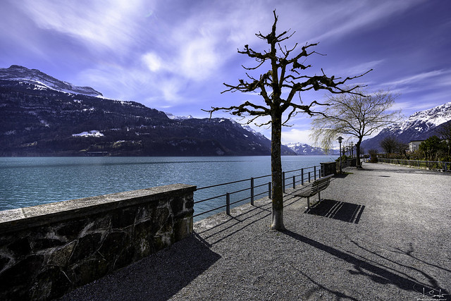 Walking by the lake - Brienz - Bern - Switzerland