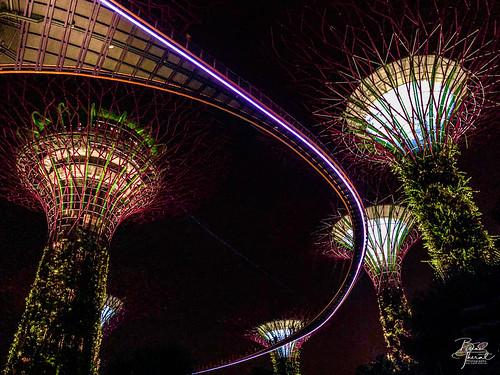 view gardensbythebay temasek southeast asia bay singapore pandoraonearth southeastasia gardens mustsee mustgo central
