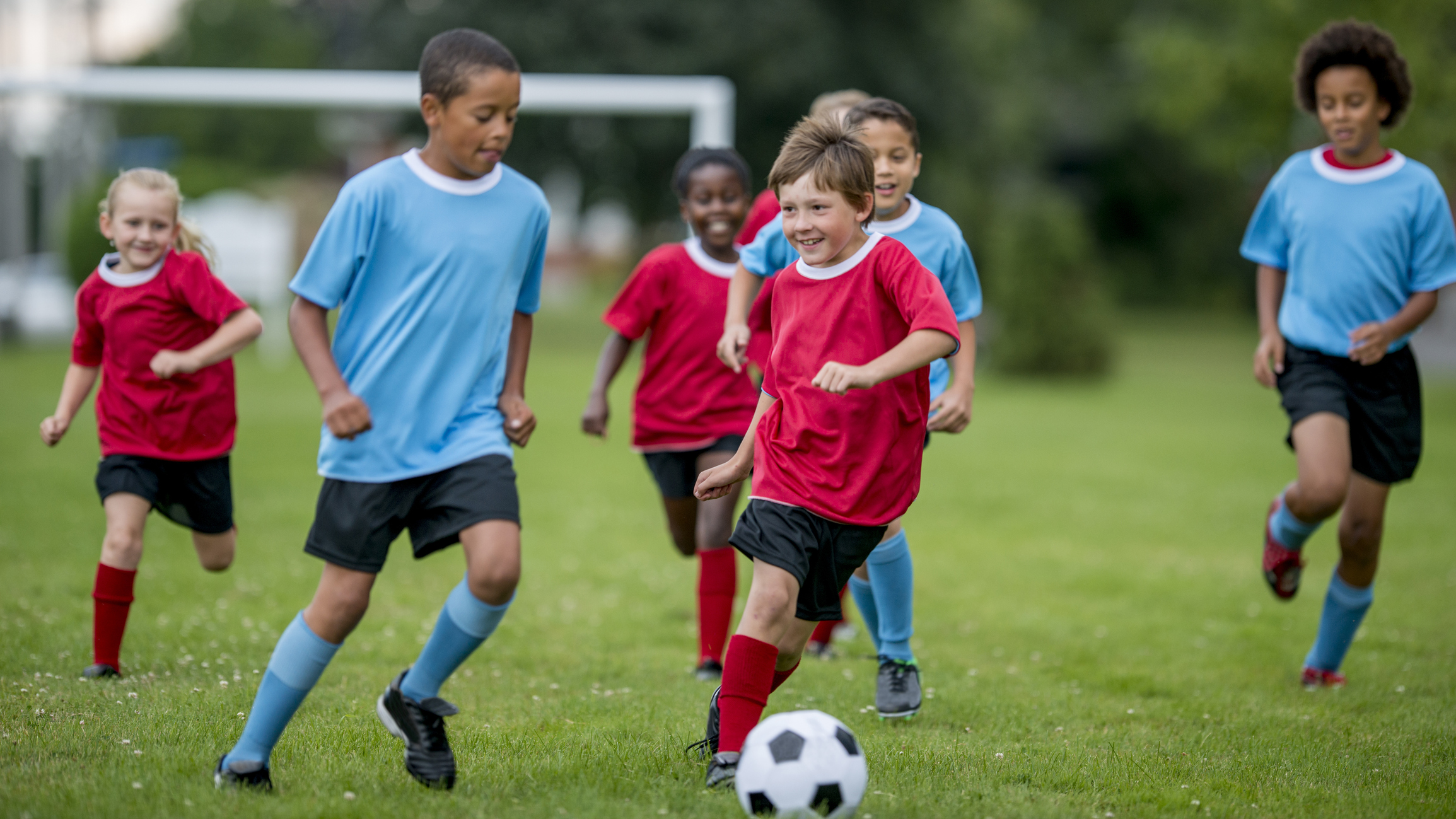 A multi-ethnic group of children are playing football, while running down a grass field, kicking and chasing the ball