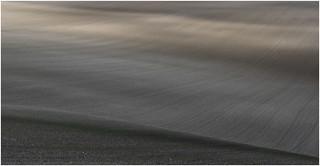 Sunlight on field patterns study E 1103_036 crop line