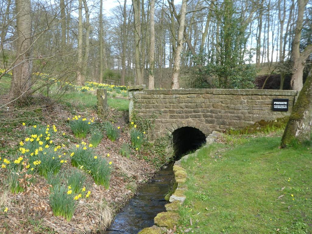 Tiny bridge over a stream in Middleton, Ilkley