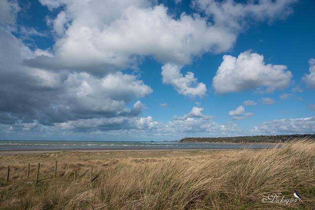 Réserve naturelle de la baie de Saint-Brieuc Bon abri Hillion