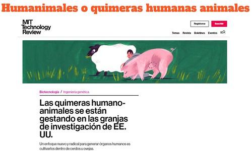 Humanimales o quimeras humanas animales: ¿Algo posible, ético,...?