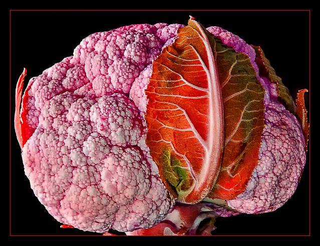 Blumenkohl Cauliflower Fun with Color