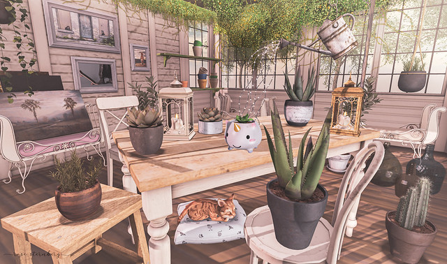 Organizing the garden house