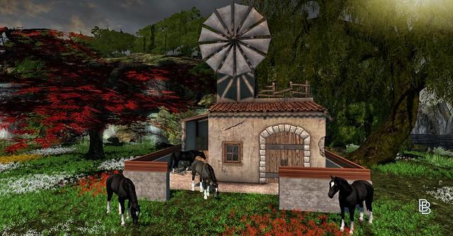 Killer's. - Spulino Windmill Shack