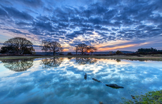 Cloud Reflections At Sunrise