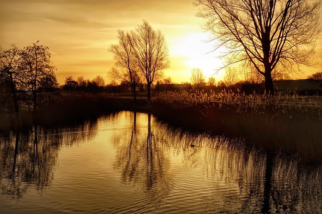 Sunrise lake III