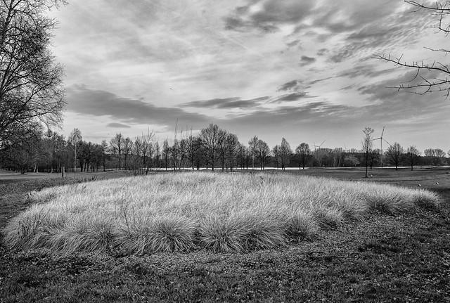 Paal - Limburg