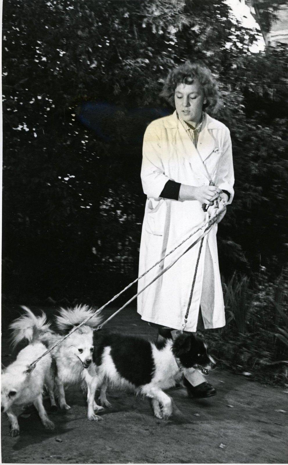 1958. Собаки Дымка и Козявка на прогулке в саду близ лаборатории. 25.09