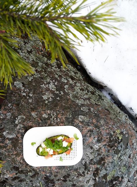 avokado grillissä-2