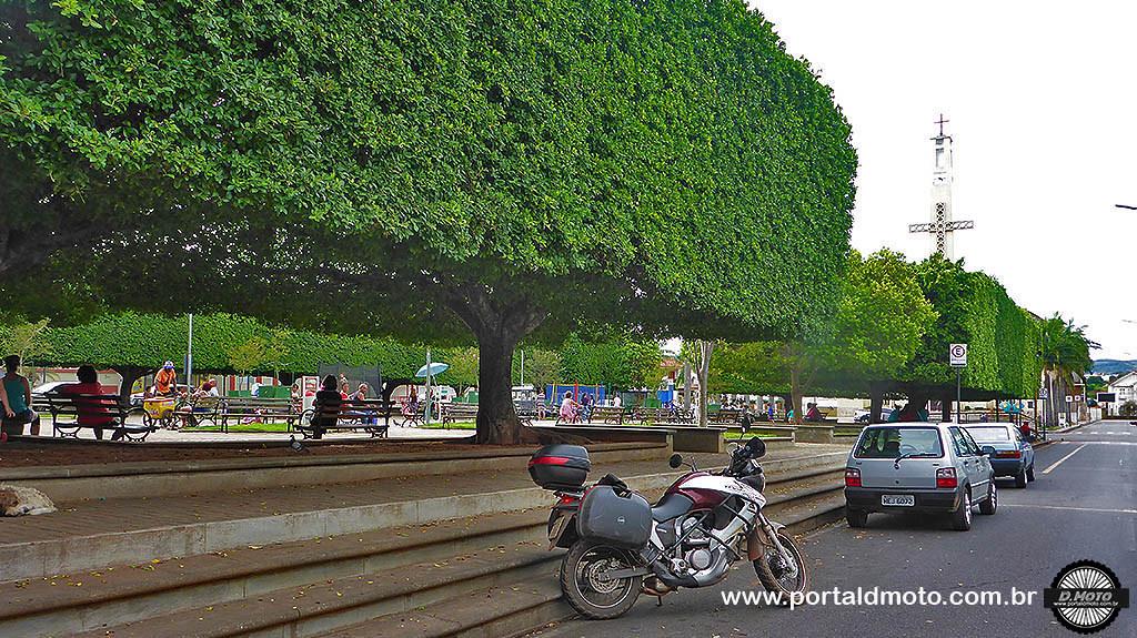 árvores em frente da Matriz Nova