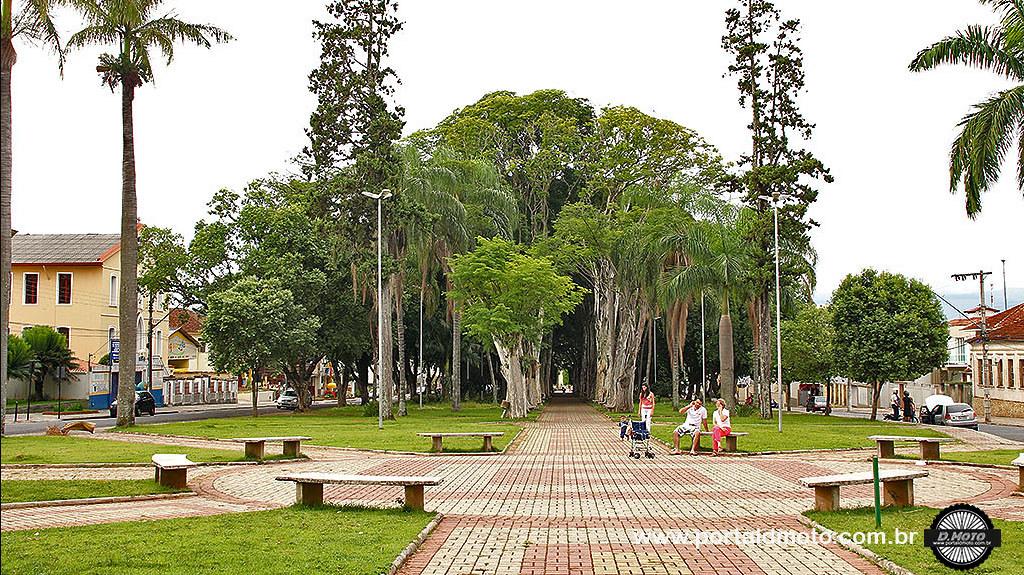 árvores em frente da Matriz Velha