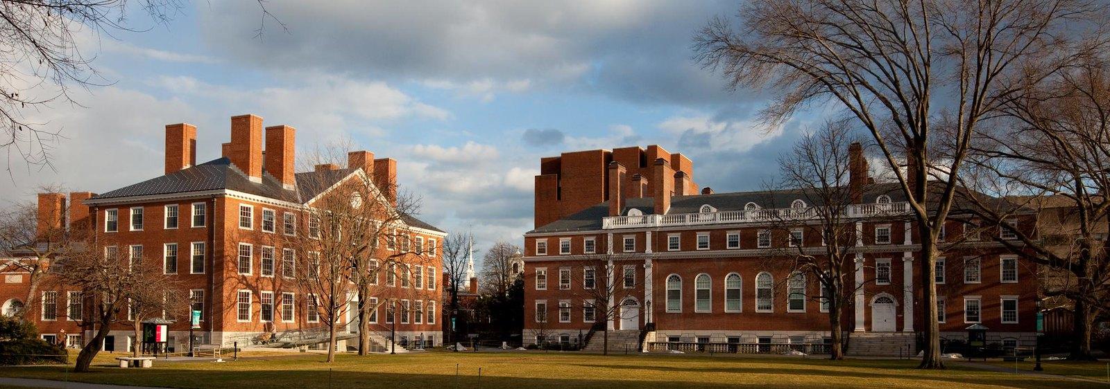 Bostoni és szegedi kutatók közös munkája hasznos lehet a fájdalom új kezelési formáihoz