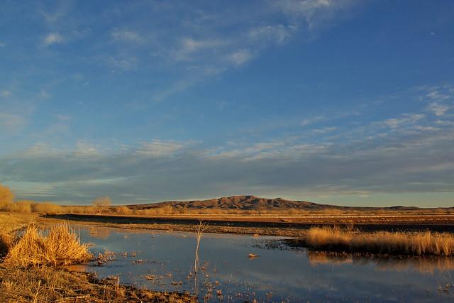 A view toward Little San Pasqual Mountain,  Bosque del Apache National Wildlife Refuge, New Mexico, USA.