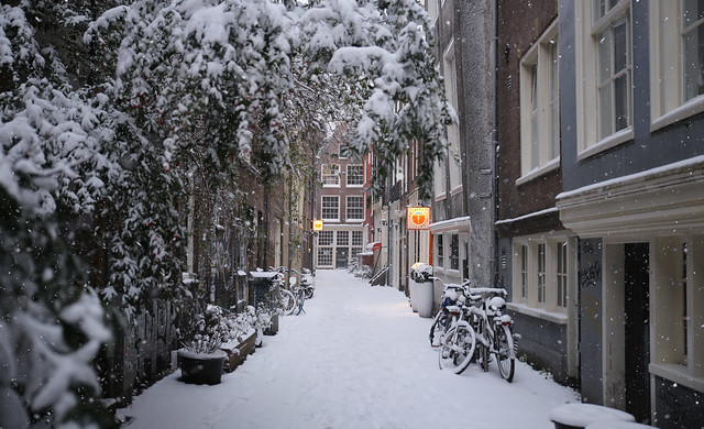Winter's firstborn snow dots falling in the Oude Nieuwstraat in Amsterdam