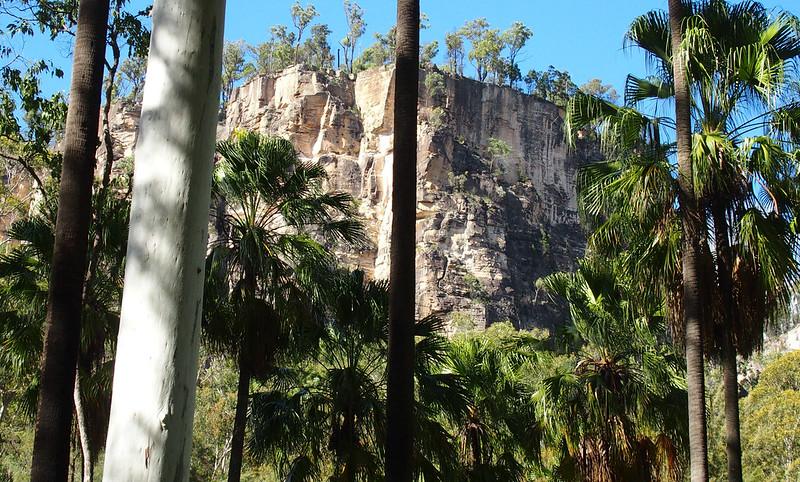 Sandstone cliffs in the gorge