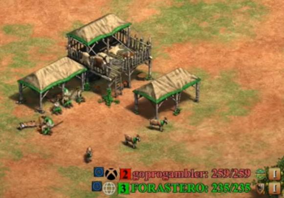 AoE2:DE Screenshot of a 1v1