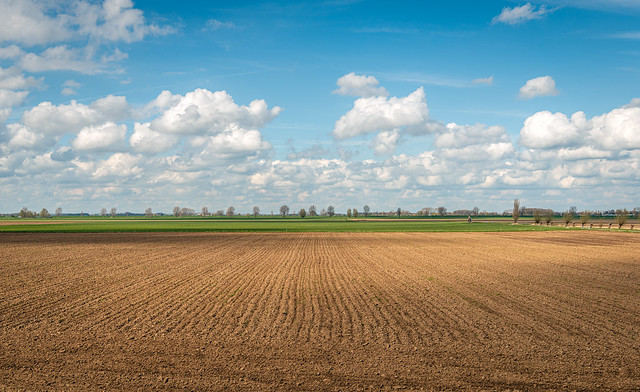 Freshly plowed field on a cloudy day