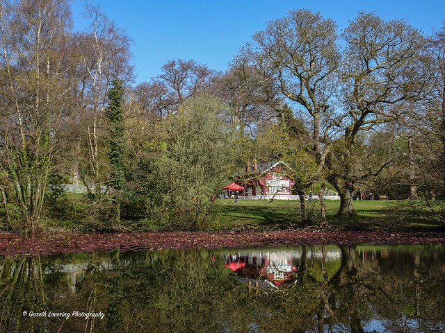 Swansea Singleton Park 2021 04 10 #3