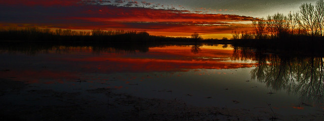 End of a day at Bosque del Apache National Wildlife Refuge, New Mexico, USA.