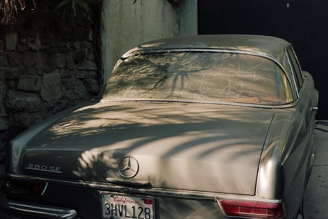 Palm shadow back window Benz