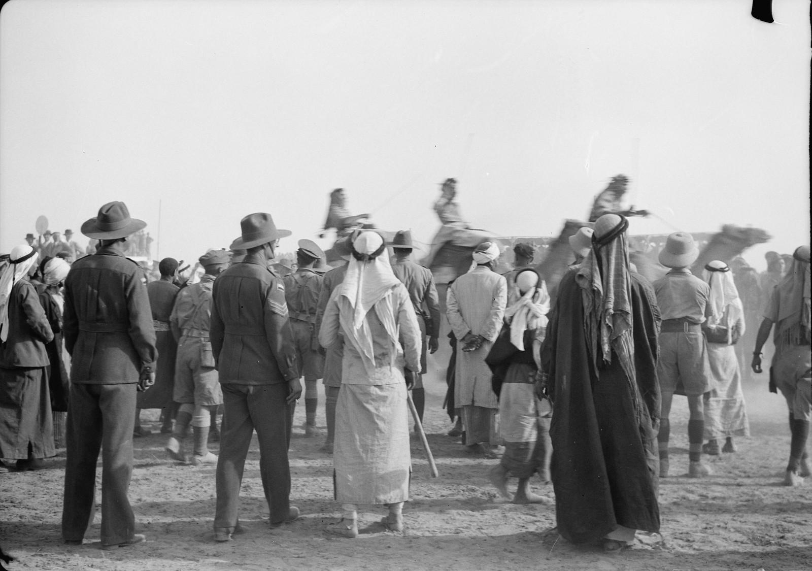 33. Гонка на верблюдах идёт полным ходом, возбужденная толпа следит за скачками