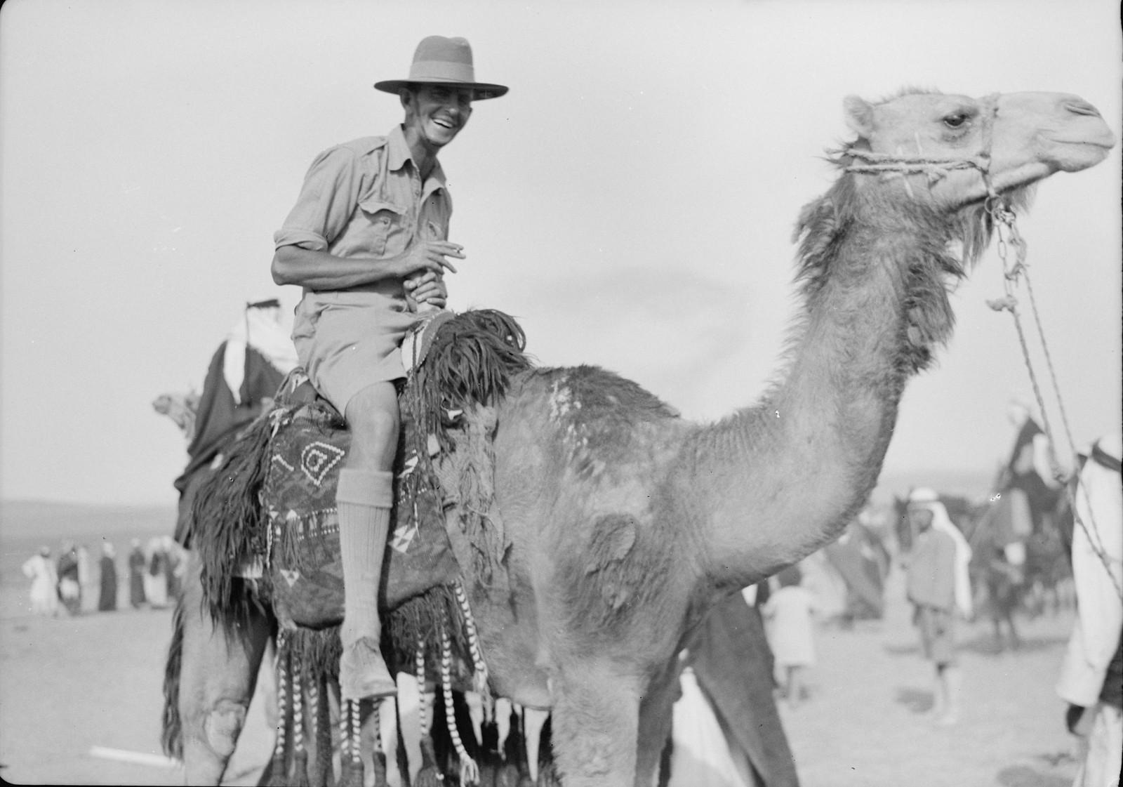 08. Австралийский солдат верхом на верблюде