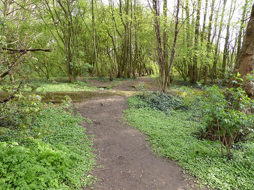 Dothill Nature Reserve