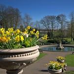 Spring at Miller Park in Preston