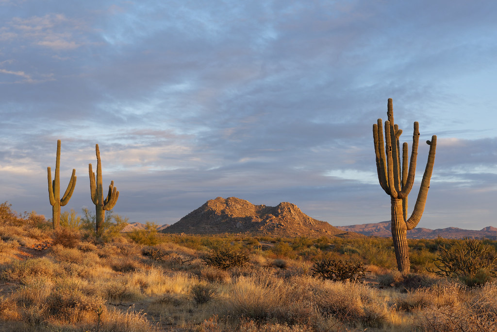 A view of Granite Mountain from the Fraesfield area of McDowell Sonoran Preserve in Scottsdale, Arizona in the early light on December 29, 2020. Original: _CAM8536.arw