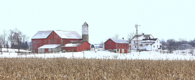 Winter in Amish Country 115