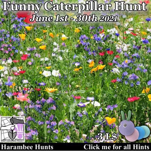Funny Caterpillar Hunt [June 1st / 30th]