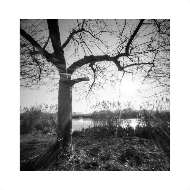 Lakeside Reinheim