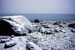 April snowfall I