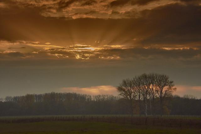 ....  dusk